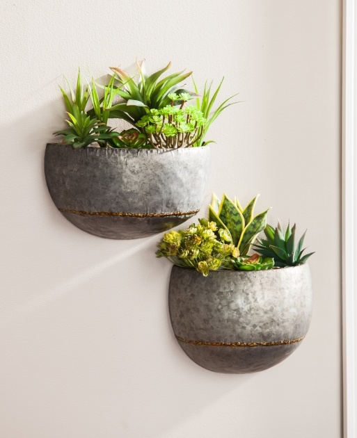 Surprising Wall Planters Photo