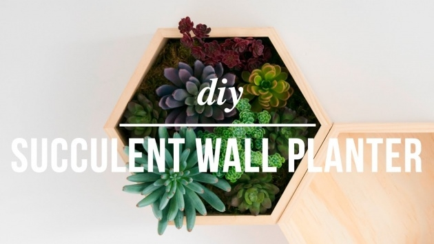 Top Artificial Wall Planters Picture