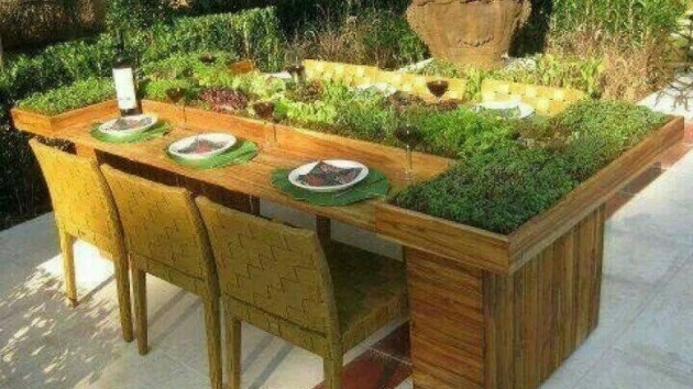 Top Outdoor Plant Table Picture