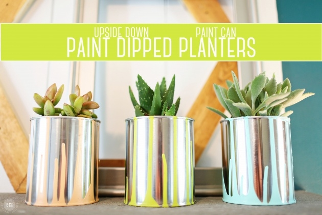 Top Paint Can Planter Picture
