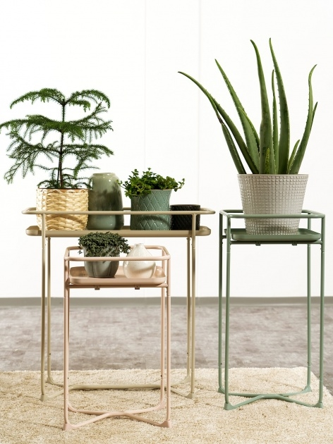 Top Plant Stand Image