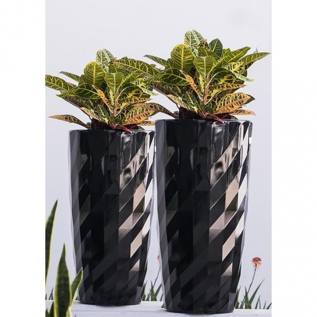 Top Tall Black Outdoor Planters Picture