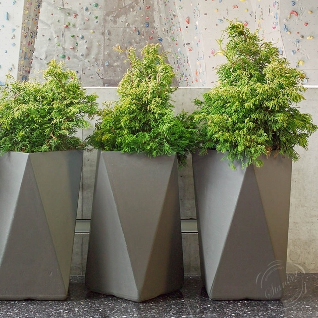 Top Tall Concrete Planters Picture