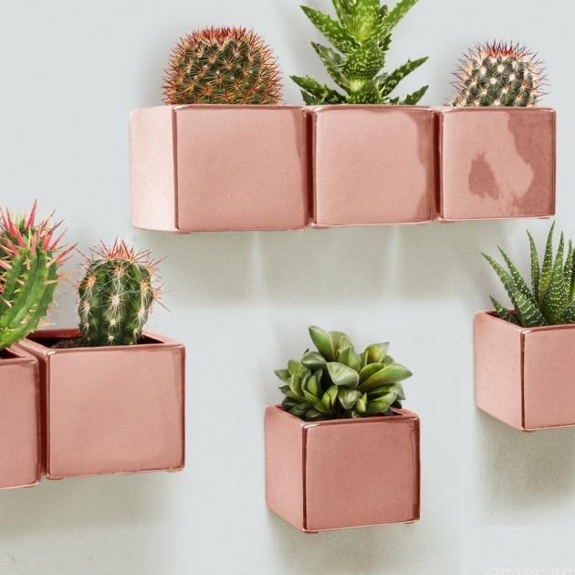 Top Wall Hanging Planters Photo