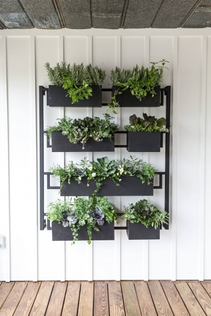 Top Wall Mounted Planter Boxes Picture