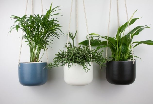 Wonderful Indoor Ceramic Planters Picture