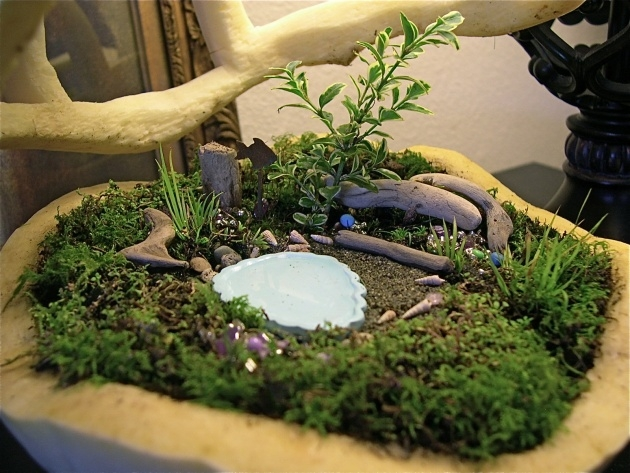 Wonderful Indoor Miniature Gardens Photo