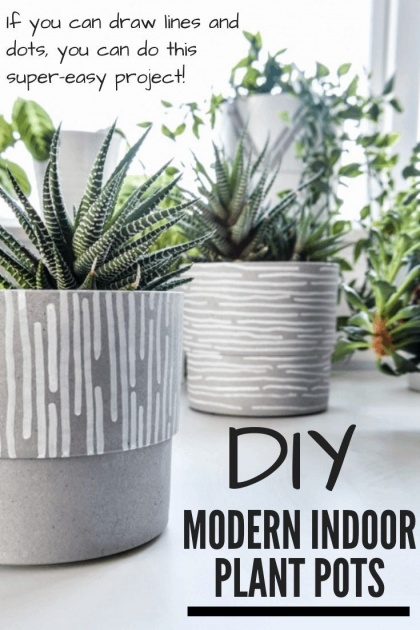 Wonderful Indoor Plant Pots Photo