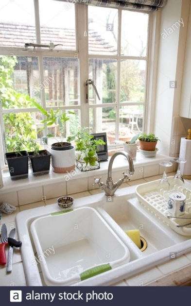 Wonderful Kitchen Window Plants Image