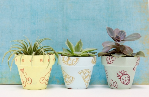 Wonderful Painted Plant Pots Image