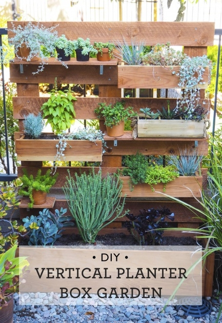 Wonderful Vertical Planter Box Image