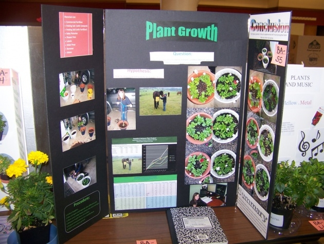 Amazing Music And Plants Science Fair Project Results Image