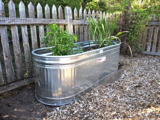Awesome Galvanized Steel Planter Boxes Photo