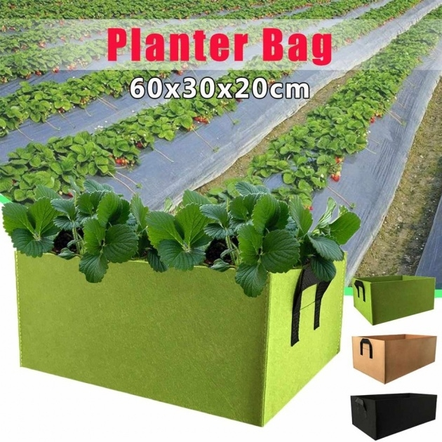 Awesome Vegetable Planter Photo