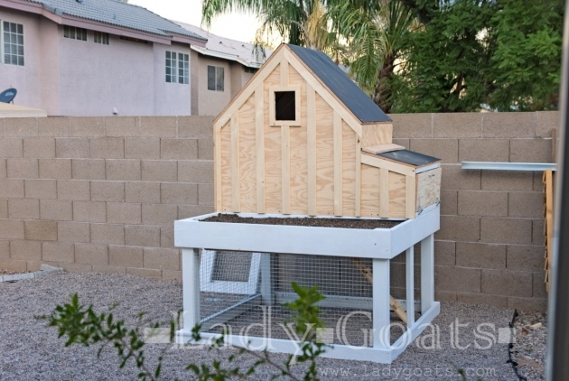 Best Chicken Coop With Planter Picture