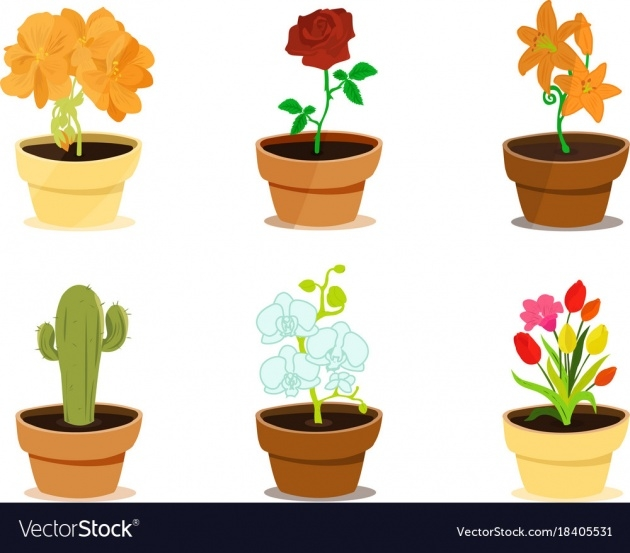 Best Cool Clay Pots For Plants Photo
