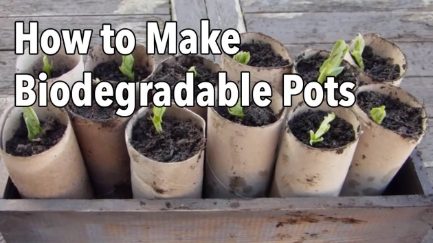 Best Cool Homemade Plant Pots Photo