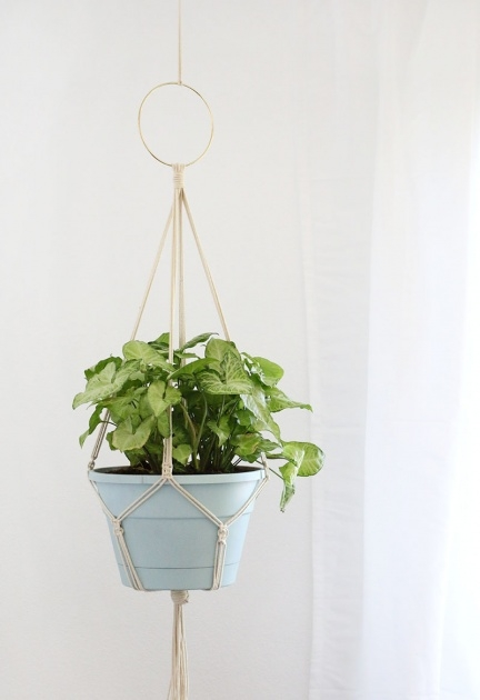Best How To Make A Plant Hanger Photo