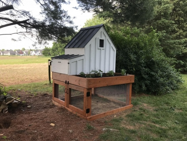 Cool Chicken Coop With Planter Image