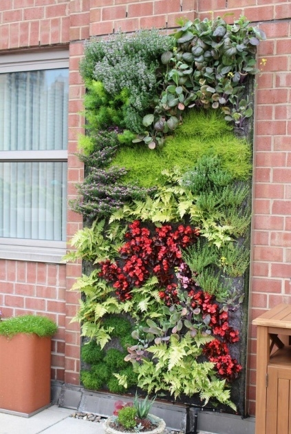 Cool Outdoor Living Wall Planters Image