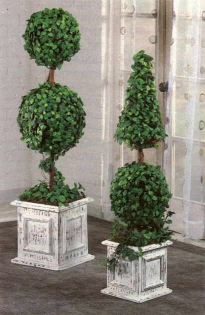 Cool Outdoor Topiary Plants Image