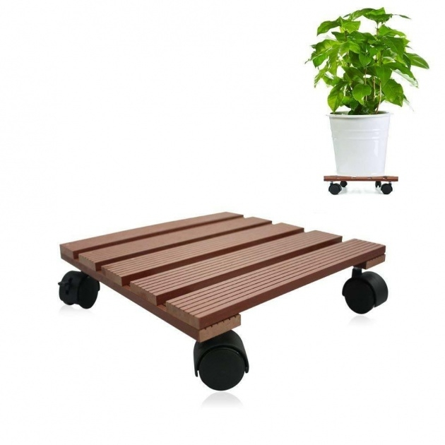 Cool Plant Stand With Wheels Picture