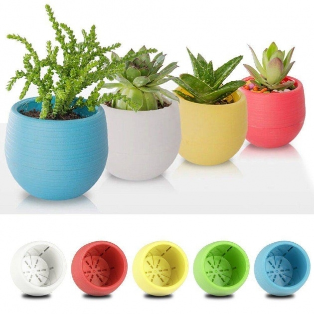 Cool Small Plant Pots Picture