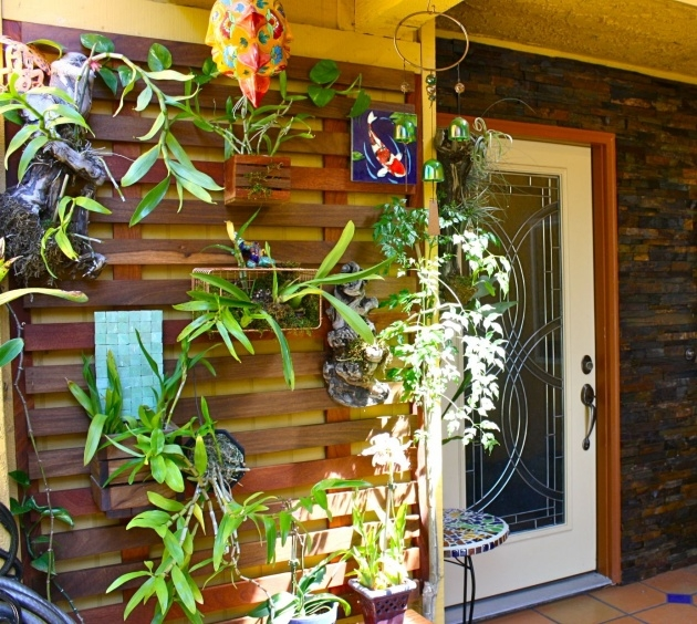 Creative Orchid Wall Planter Picture