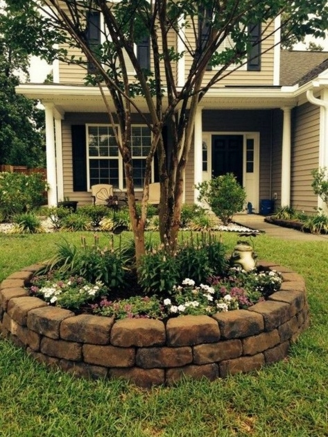 Creative Tree Ring Planter Ideas Picture