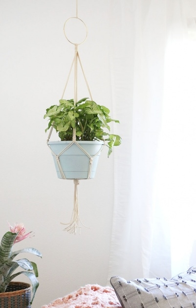 Easy How To Make A Plant Hanger Photo