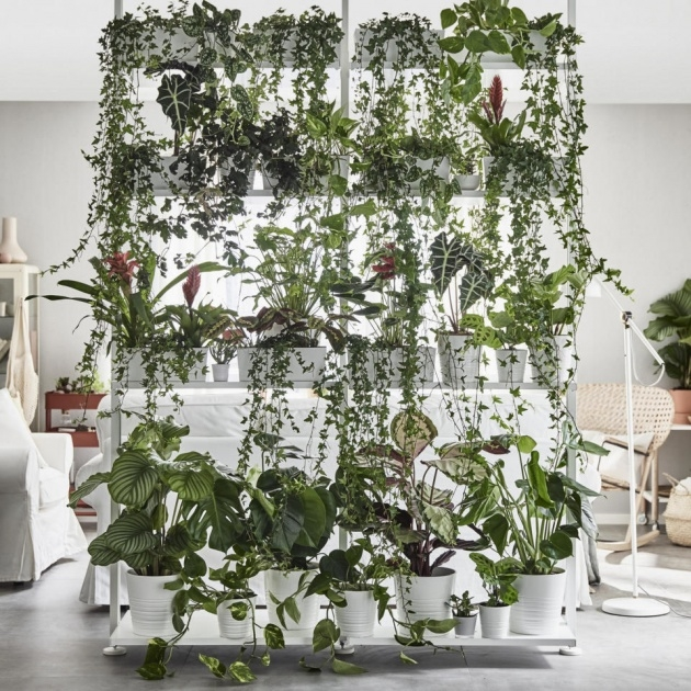 Easy Ikea Plant Wall Picture