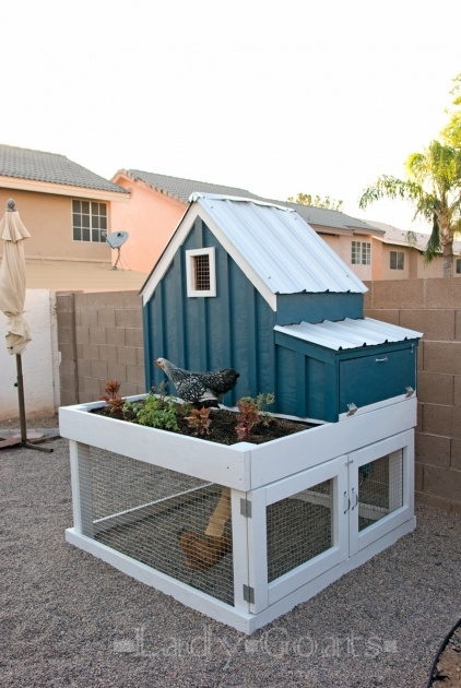 Fantastic Chicken Coop With Planter Image