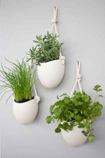 Fantastic Wall Hung Planters Picture