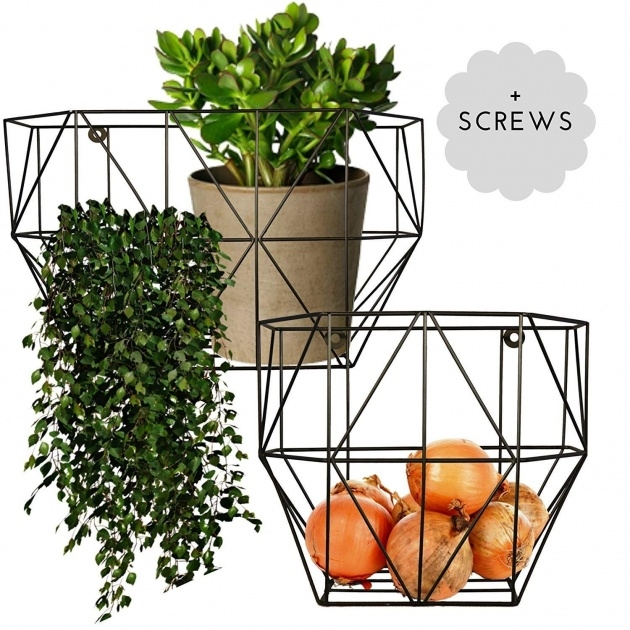 Fantastic Wire Wall Planter Image
