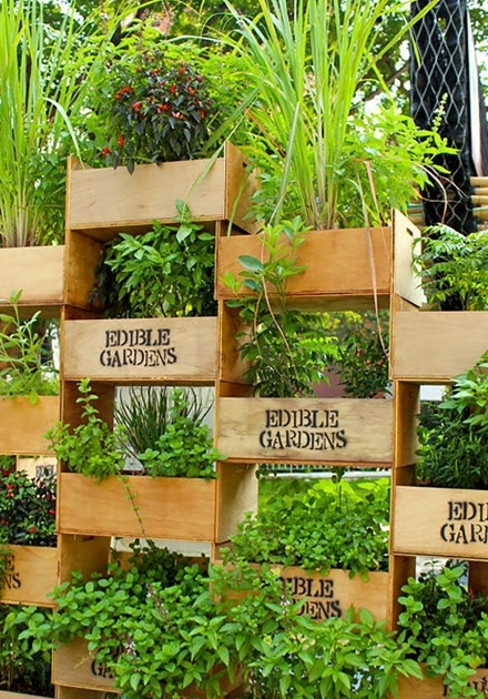 Fascinating Living Wall Panel Outdoor Planter Image