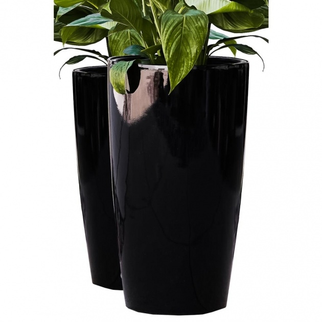Fascinating Tall Black Outdoor Planters Photo