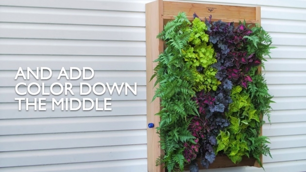 Gallery Of How To Make A Plant Wall Image