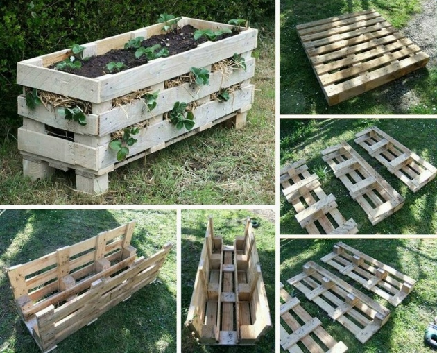 Gallery Of Pallet Strawberry Planter Image