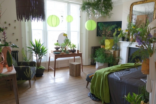 Gallery Of Plants In Bedroom Feng Shui Picture