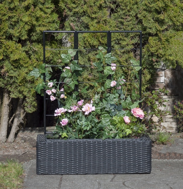 Gallery Of Resin Wicker Planter Boxes Photo