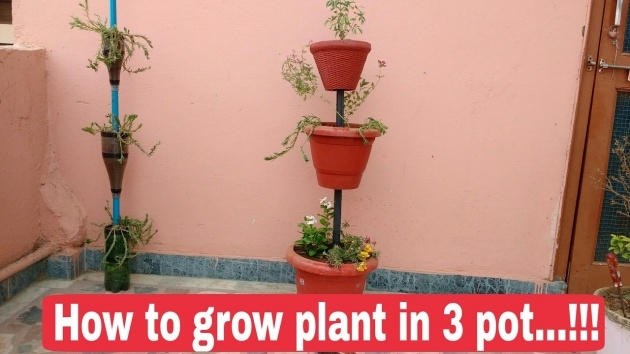 Gallery Of Tower Plant Pots Image