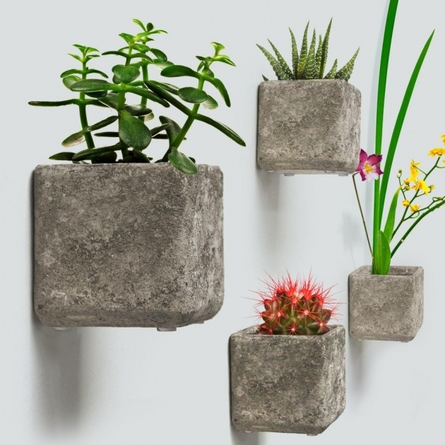 Gallery Of Wall Hanging Planters Photo
