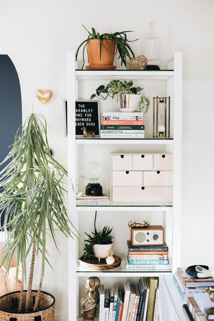 Good Plants For Small Spaces Photo