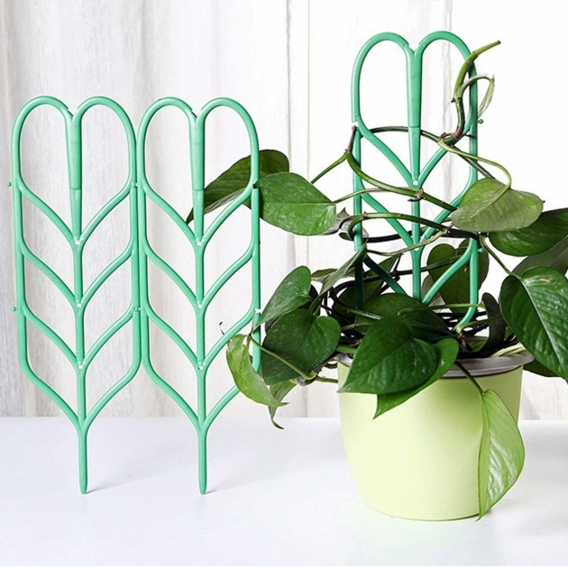Good Small Lattice For Potted Plants Image