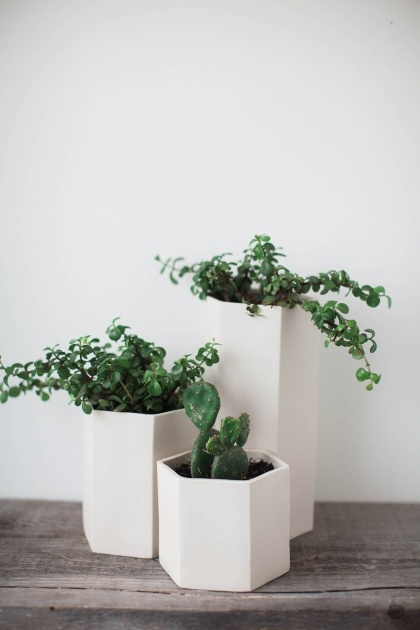 Good Tabletop Planter Picture