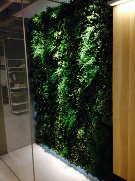 Gorgeous Ikea Plant Wall Picture