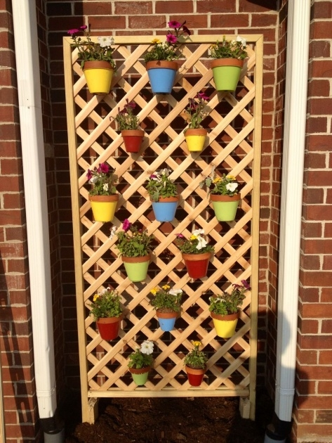 Gorgeous Small Lattice For Potted Plants Image
