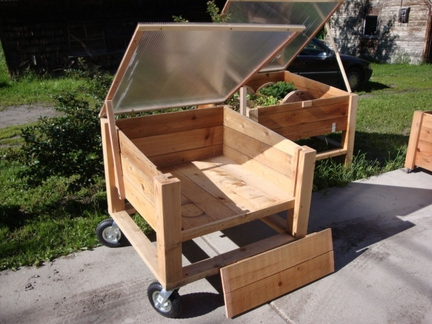 Great Movable Planter Boxes Image