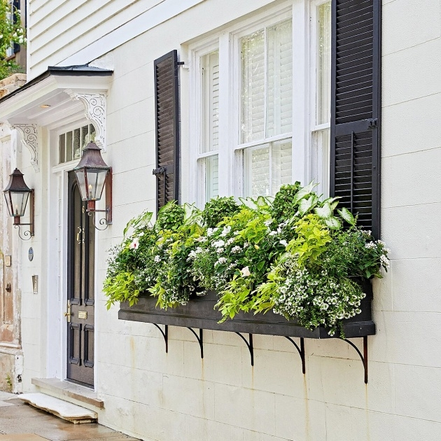 Ideas for Outdoor Window Boxes Window Box Planters Photo