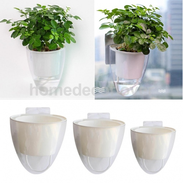 Ideas for Plastic Wall Planters Picture